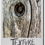 August Break – Day 25: Texture